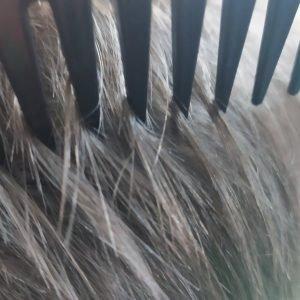 Расческа антистатическая с редкими зубьями Curved Comb 120620 Vilins